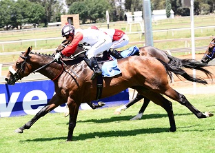 New Predator a banker at Turffontein