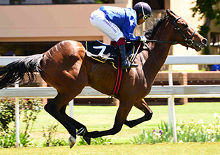 Always A Lady looks a classy bet at Vaal