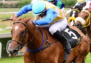 Woodruff duo set to fight out finish at the Vaal