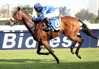 Patchit Up Baby can add to Lerena's tally