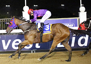 Follow Delpech and Marcus on the Polytrack