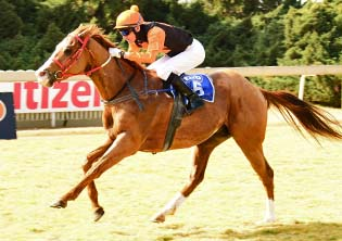 Greasepaint looks ready to play lead role at the Vaal