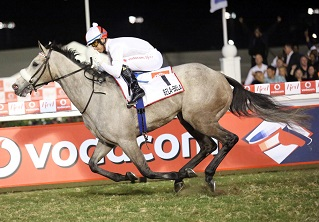 Victory could make Bela-Bela the Horse of the Year