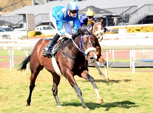 Two possible Pick 6 bankers stand out at the Vaal