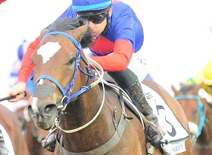 Tarry enters nine in Charity Mile