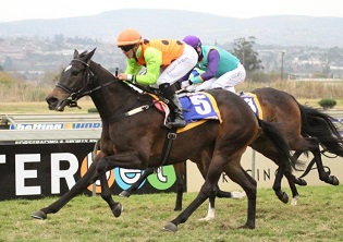 Delpech the man at Scottsville
