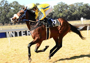 De Kock loads up for Guineas