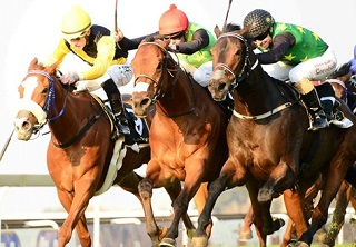 Legal Eagle set for a 'Nother' clash on Champs Day
