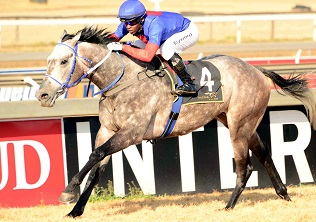 Lord Silverio a stand-out bet