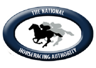 Handicapping ratings update
