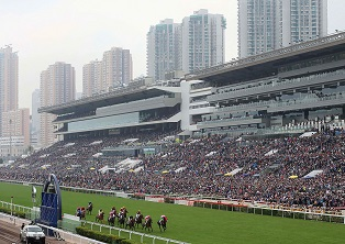 Hong Kong Wednesday guide