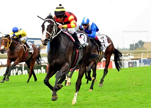 National Park grabs Guineas