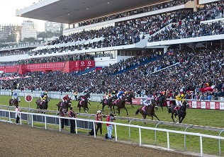 Durban July carryovers