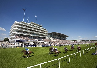 Guide to Investec Derby