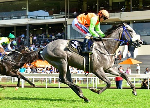 Frosted, Basadi win Nurseries