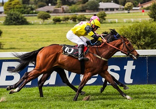 Fourie feasts on five timer