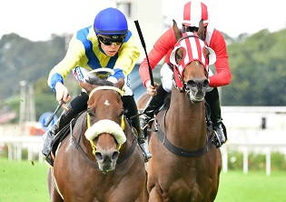 Vaseem and Riverstown to fight it out at the Vaal