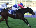 High-class racing in the Cape