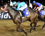 Bizjet to do the business on the Greyville grass