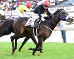 Fillies Guineas, Classic winners for Oaks showdown