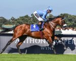 Snaith dominates new July log