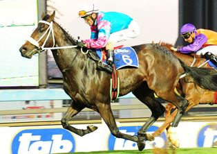 Vaal 2400m will hand down judgment on Judicial's stamina