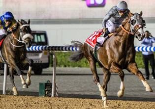 In one night, more prize money than 12 July wins for MdK