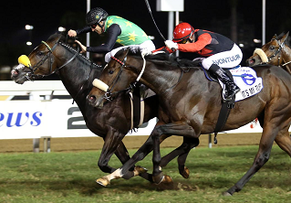 Rabada and Bela-Bela do the business at Greyville