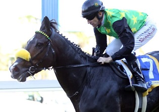 Strong entry for Peermont Emperors Palace Charity Mile