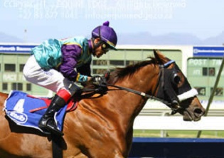Snaith holds a good hand in PE's Jockey Club Stakes