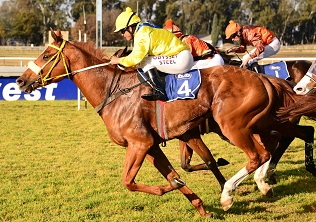 Kanonkop carries some heavy artillery at the Vaal