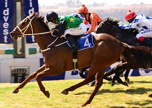 Soma's Miracle leads The Grand Heritage charge